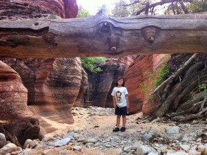 Zion Riverbed Hike